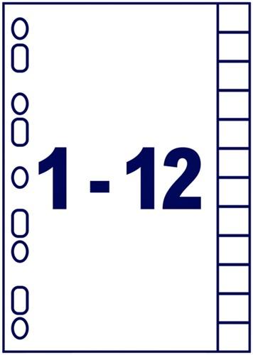 TABBLADEN AVERY READYINDEX A4 4R 12DLG 1 SET-2
