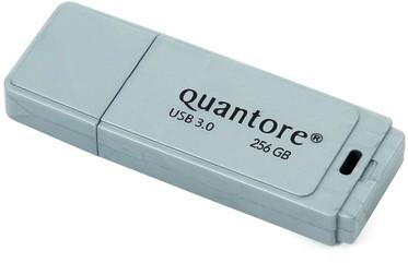 USB-STICK QUANTORE FD 256GB 3.0 ZILVER 1 Stuk
