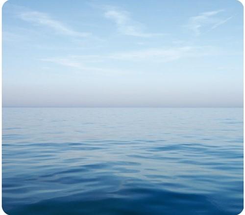 MUISMAT FELLOWES NATUUR BLAUWE OCEAAN 228X203MM 1 STUK