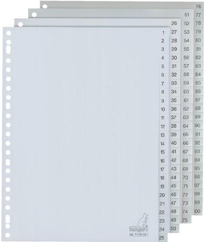 TABBLAD KANGARO G4100CM A4 23R PP 100DLG 1-100 GR 1 Set