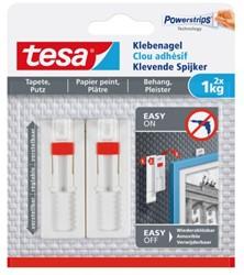KLEVENDE SPIJKER TESA BEHANG EN PLEISTERWERK VERSTELBAAR 1KG 2 STUK