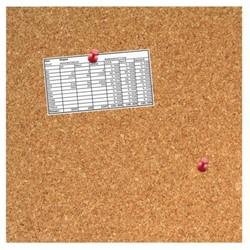 KURKBORD DESQ 35X35CM RANDLOOS + PUSH PINS 1 STUK