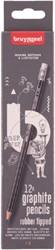 POTLOOD BRUYNZEEL 6021 BUROTEK HB MET GUM 12 STUK