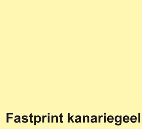 KOPIEERPAPIER FASTPRINT-50 A4 160GR KANARIEGEEL 50 VEL-2
