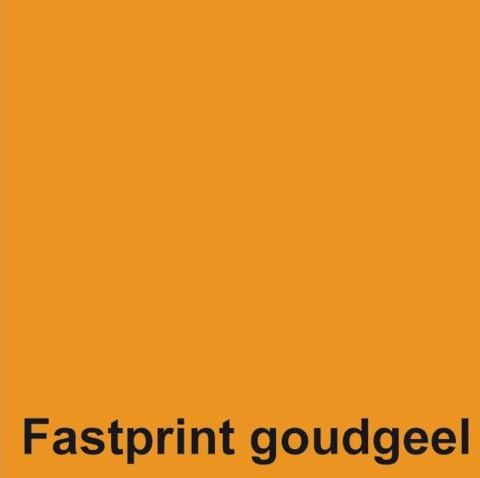 KOPIEERPAPIER FASTPRINT A4 120GR GOUDGEEL 250 VEL-2